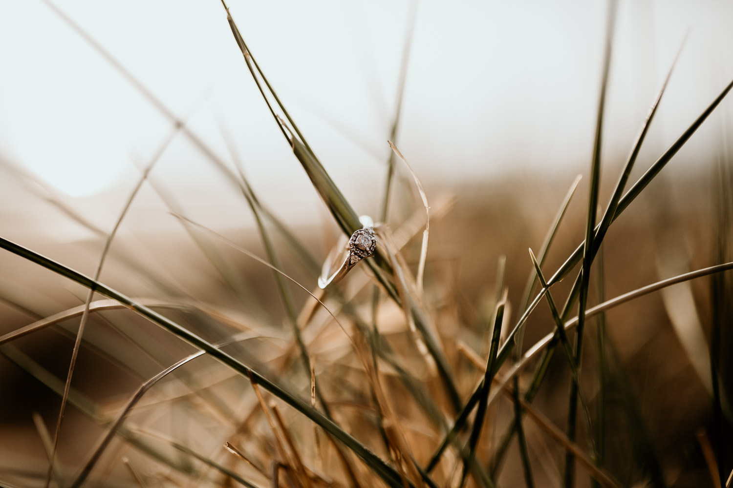 relaxed beech engagement shoot engagement ring in the long grass