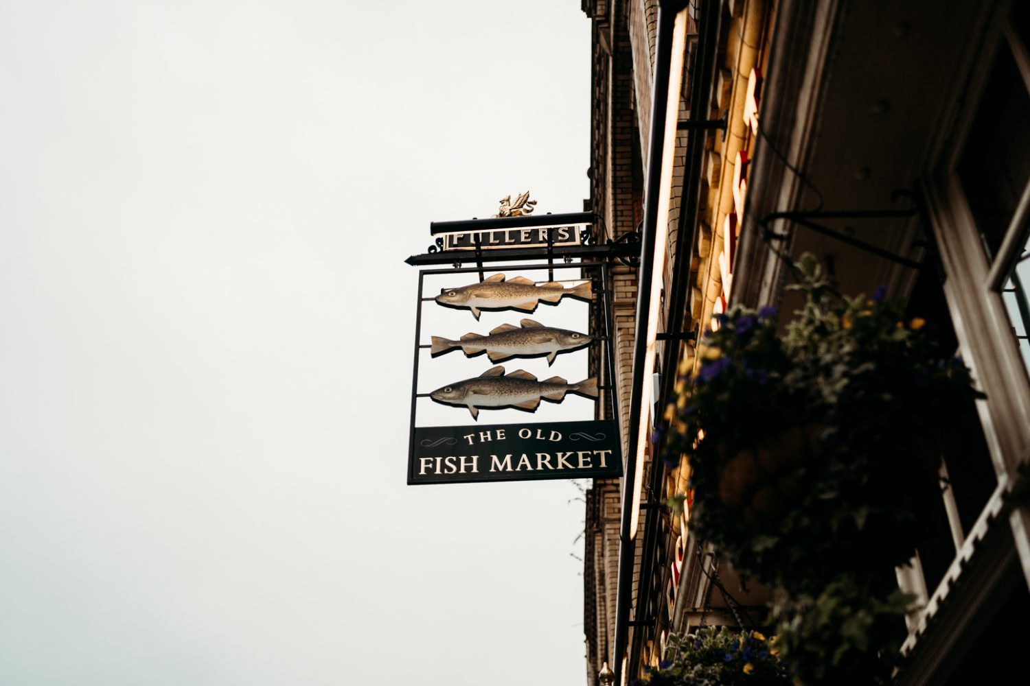 old fishmarket sign engagement session bristol